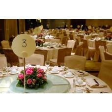 Party Rental Gold Decoration