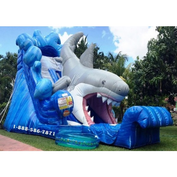 Shark Inflatable Slide Rentals In Miami Fort Lauderdale