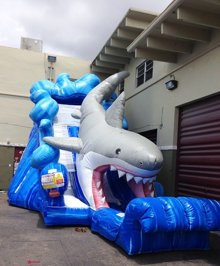 Inflatable Water Slide To Rent: Shark Water Slide Rentals