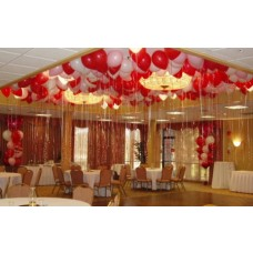 Party Rental Balloons Decoration