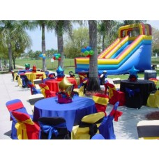 Party Rental Multi Colors Decoration
