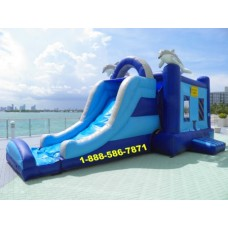 Dolphin Bounce House