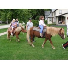 Ponies Rides