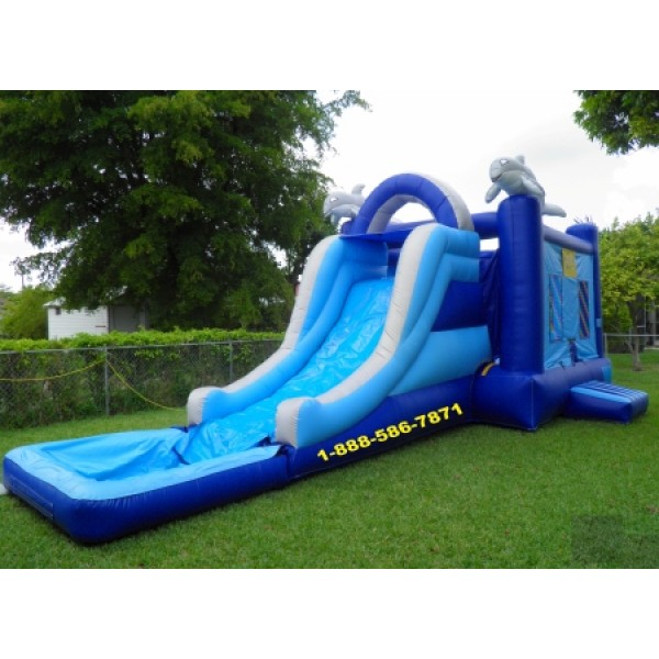 Inflatable Water Slide To Rent: Dolphin Bounce Water Slide Rentals